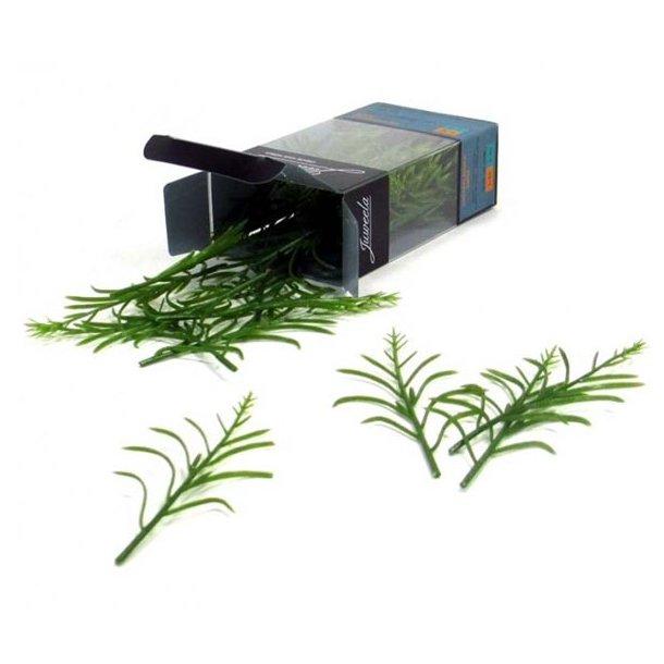 Majsplante grøn 50 stk 1/32 Juweela